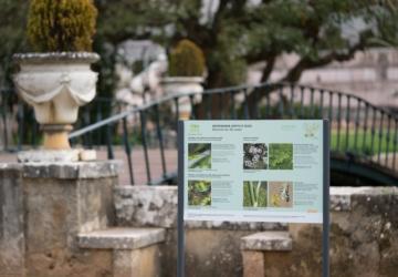 Já viu os painéis sobre biodiversidade nos parques e jardins de Oeiras?