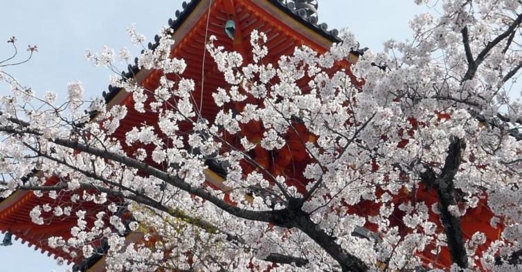 Quioto