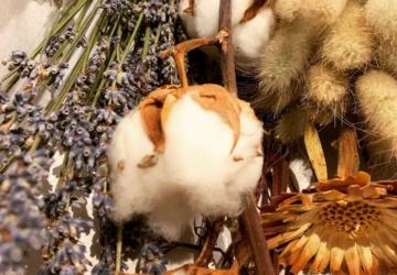 A Florascape vende ramos lindos — ou flores secas separadas para fazer o que quiser